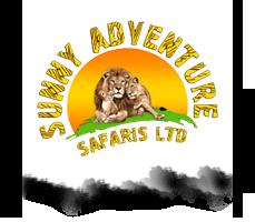 sunny-adventures